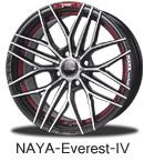 NAYA-Everest-IV